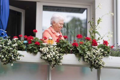 KSG Hannover - Balkon- und Gartenwettbewerb Jury unterwegs 2019-08-13+14